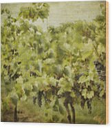 Purple Grapes On The Vine Wood Print by Jeff Swanson