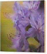 Purple Whispers Wood Print by Mike Reid