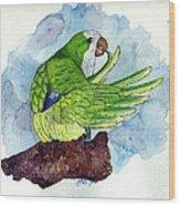 Quaker Parakeet Bird Portrait   Wood Print by Olde Time  Mercantile