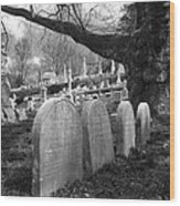 Quiet Cemetery Wood Print by Jennifer Ancker