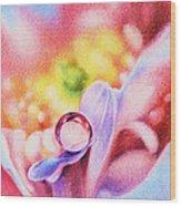 Rainbow Wood Print by Natasha Denger