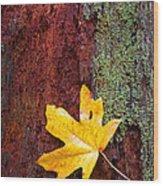 Reclamation Wood Print by Mike  Dawson