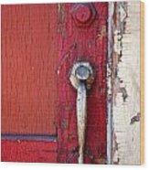 Red Door Wood Print by Peter Tellone