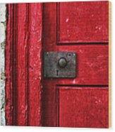 Red Door Wood Print by Steven  Michael