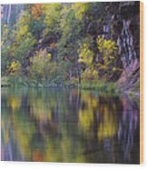 Reflected Fall Wood Print by Peter Coskun