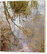 Reflections Wood Print by Delona Seserman