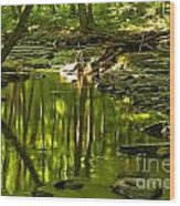Reflections In Hells Hollow Creek Wood Print by Adam Jewell