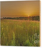 Retzer Sunset Wood Print by Andrew Slater