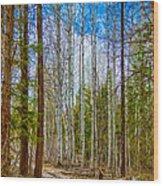 River Run Trail At Arrowleaf Wood Print by Omaste Witkowski