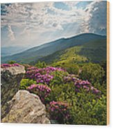Roan Mountain From Appalachian Trail Near Jane's Bald Wood Print by Dave Allen