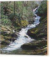 Roaring Fork Falls - Spring 2013 Wood Print by Joel Deutsch