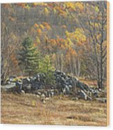 Rock Pile In Maine Blueberry Field Wood Print by Keith Webber Jr
