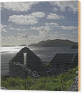 Rock Ruin By The Ocean - Ireland Wood Print by Mike McGlothlen