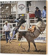 Rodeo High Flyer Wood Print by Jon Berghoff