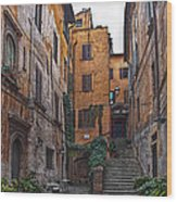 Roman Backyard Wood Print by Hanny Heim