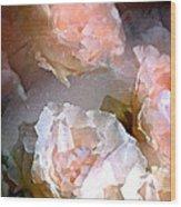 Rose 154 Wood Print by Pamela Cooper