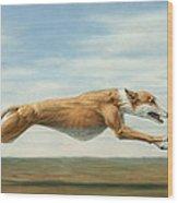 Running Free Wood Print by James W Johnson