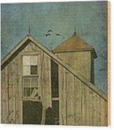 Rural Iowa Barn 5 Wood Print by Cassie Peters