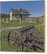 Rural Ontario Wood Print by Steve Harrington