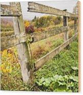 Rustic Landscapes - Broken Fence Wood Print by Gary Heller