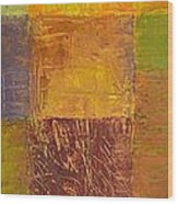 Rustic Layers 2.0 Wood Print by Michelle Calkins