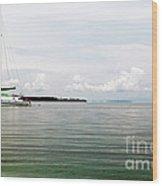 Sailing At Star Beach Wood Print by John Rizzuto