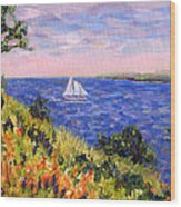 Sailing Through Belfast Maine Wood Print by Pamela Parsons