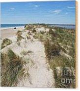 Sand Dunes Separation Wood Print by Sami Sarkis