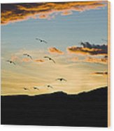 Sandhill Cranes In New Mexico Wood Print by William H Mullins