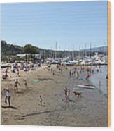 Sausalito Beach Sausalito California 5d22696 Wood Print by Wingsdomain Art and Photography