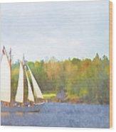 Schooner Castine Harbor Maine Wood Print by Carol Leigh