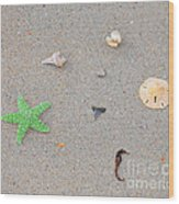 Sea Swag - Green Wood Print by Al Powell Photography USA