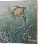 Sea Turtle Wood Print by Nancy Gorr