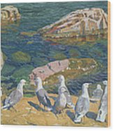 Seagulls Wood Print by Arkadij Aleksandrovic Rylov