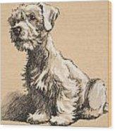 Sealyham Wood Print by Cecil Charles Windsor Aldin