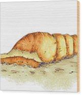 Seashell Wood Print by Brenda Bryant