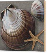 Seashells Spectacular No 38 Wood Print by Ben and Raisa Gertsberg