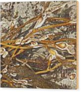 Seaweed Swirls Wood Print by Artist and Photographer Laura Wrede