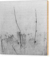 Shades Of Grey Wood Print by Prakash Ghai