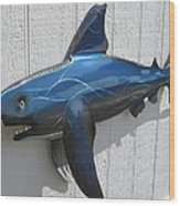 Shark Blue Bull Shark Wood Print by Robert Blackwell