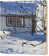 Shed In Winter Wood Print by Sophie Vigneault