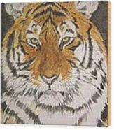 Siberian Tiger Wood Print by Regan J Smith