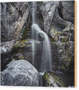 Silver Waterfall Wood Print by Carlos Caetano