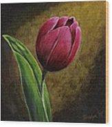 Single Tulip Wood Print by Jesslyn Fraser