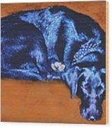 Sleeping Blue Dog Labrador Retriever Wood Print by Ann Powell