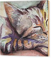 Sleeping Kitten Wood Print by Olga Shvartsur