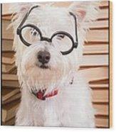 Smart Doggie Wood Print by Edward Fielding