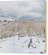 Smuggler's Beach Snow Cape Cod Wood Print by Michelle Wiarda