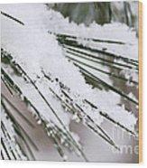 Snow On Pine Needles Wood Print by Elena Elisseeva