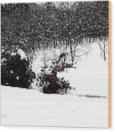 Snow Scene 6 Wood Print by Patrick J Murphy